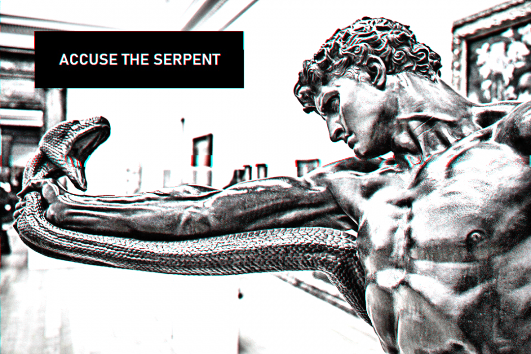 Accuse The Serpent